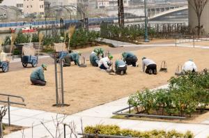 Ces gens coupent l'herbes aux ciseaux et caresse la pelouse